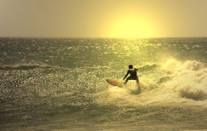 7168901 - sunset surfer in the wave